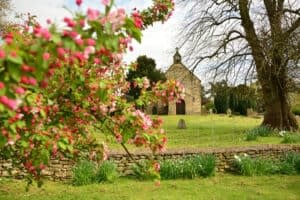 church flowering tree